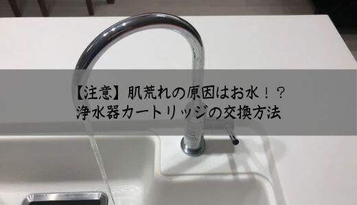 【注意】肌荒れの原因はお水?メイスイのビルドイン浄水器カートリッジ交換をセルフメンテナンスする方法